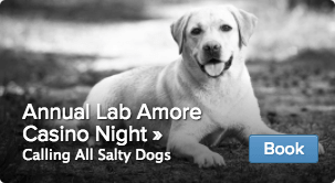 Annual Lab Amore Casino Night
